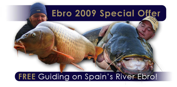 Carp, Barbel and Catfish Fishing Holidays in Spain and Worldwide