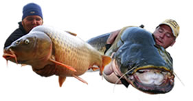 Southern Spain Big Carp Adventures, World Carp Classic and more...