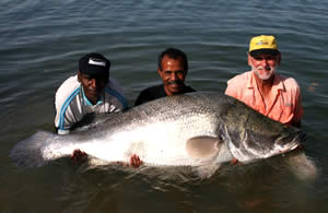 Nile Perch Angling Holidays on the River Nile in Egypt
